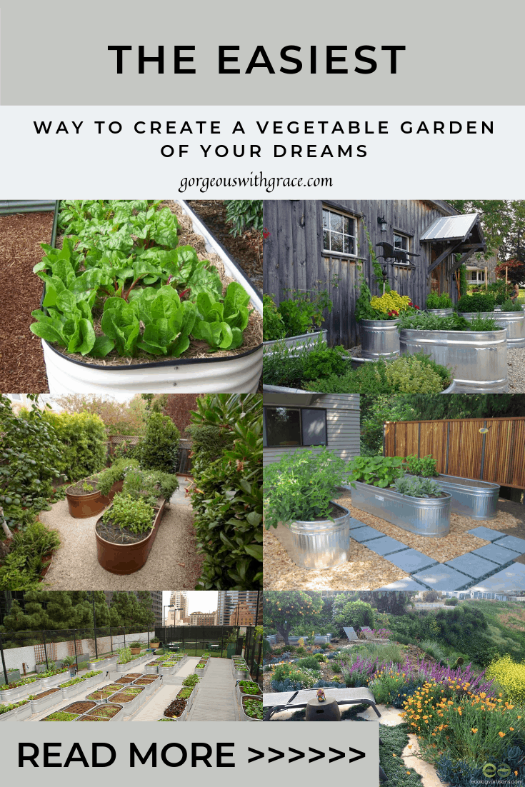 Vegetable Gardens in Water Troughs #galvanizedwatertrough #watertroughgarden