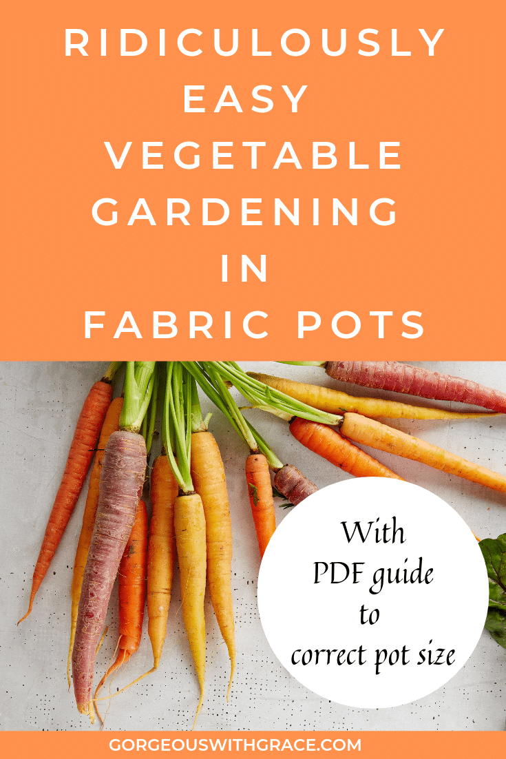 Ridiculously Easy Vegetable Gardening in Fabric Pots