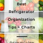 Best Refigerator Organization Tips and Charts